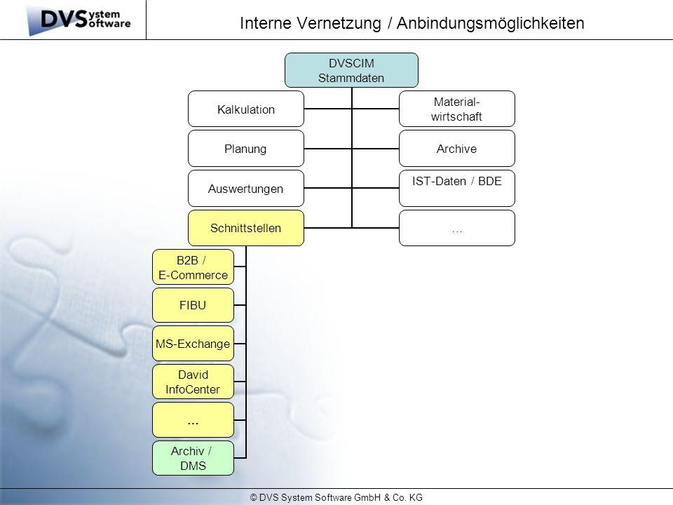 © DVS System Software GmbH & Co. KG Interne Vernetzung / Anbindungsmöglichkeiten DVSCIM Stammdaten Kalkulation Material- wirtschaft PlanungArchive Aus
