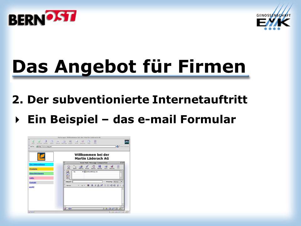 Das Angebot für Firmen 2. Der subventionierte Internetauftritt Ein Beispiel – das e-mail Formular