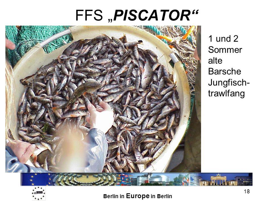 Berlin in Europe in Berlin 18 FFS PISCATOR 1 und 2 Sommer alte Barsche Jungfisch- trawlfang
