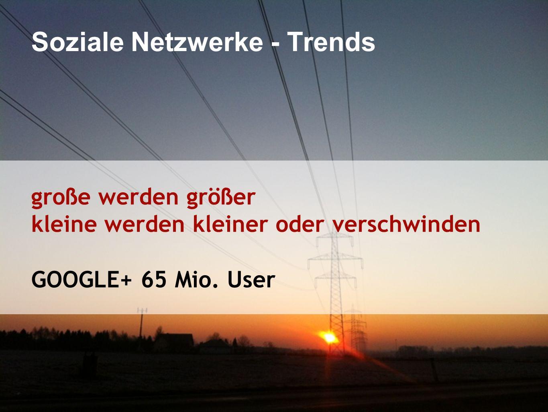 Soziale Netzwerke - Trends große werden größer kleine werden kleiner oder verschwinden GOOGLE+ 65 Mio.