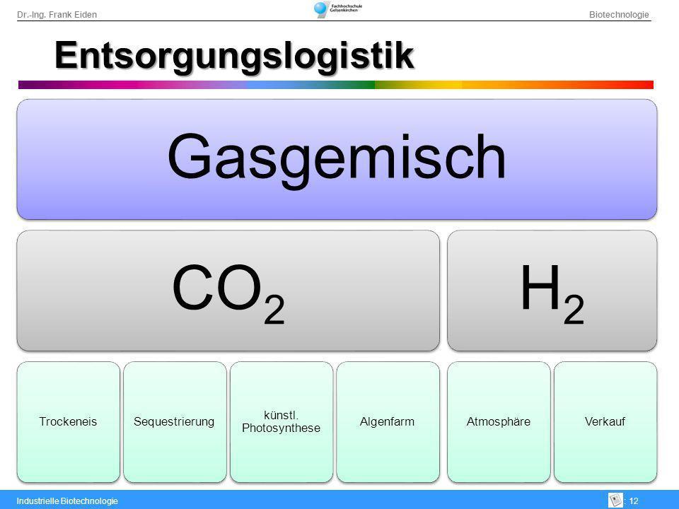 Dr.-Ing. Frank Eiden Biotechnologie Industrielle Biotechnologie: 12 Entsorgungslogistik GasgemischCO2 TrockeneisSequestrierung künstl. Photosynthese A