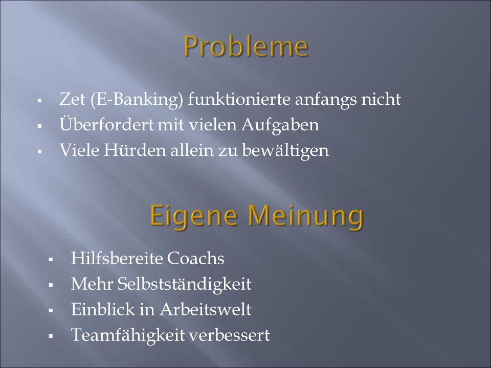 Probleme Zet (E-Banking) funktionierte anfangs nicht Überfordert mit vielen Aufgaben Viele Hürden allein zu bewältigen Hilfsbereite Coachs Mehr Selbst