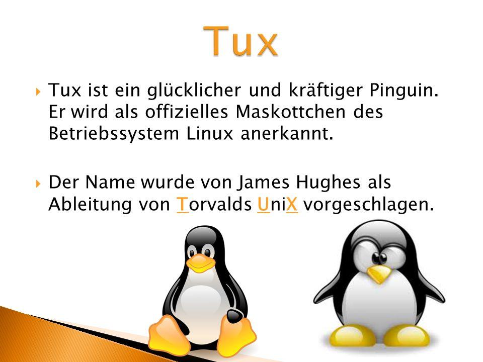 Tux ist ein glücklicher und kräftiger Pinguin. Er wird als offizielles Maskottchen des Betriebssystem Linux anerkannt. Der Name wurde von James Hughes