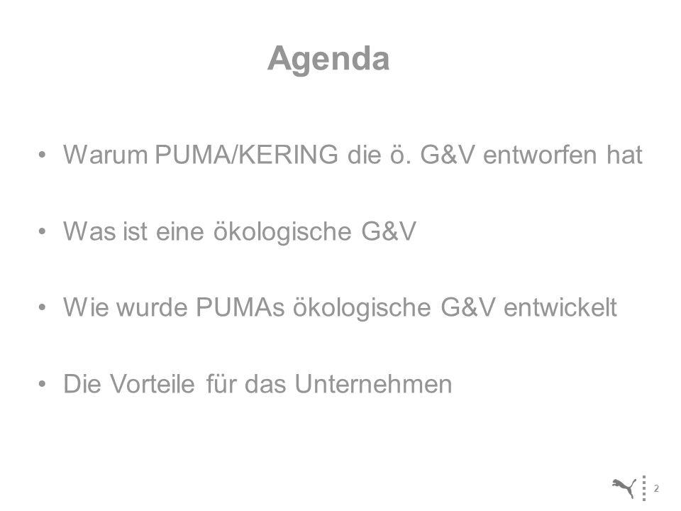 2 Warum PUMA/KERING die ö. G&V entworfen hat Was ist eine ökologische G&V Wie wurde PUMAs ökologische G&V entwickelt Die Vorteile für das Unternehmen