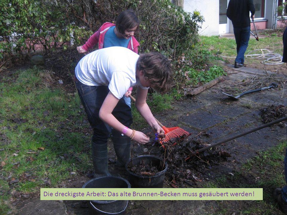 Die dreckigste Arbeit: Das alte Brunnen-Becken muss gesäubert werden!
