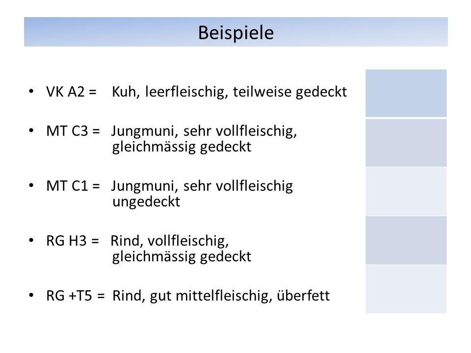 Beispiele VK A2 = Kuh, leerfleischig, teilweise gedeckt MT C3 = Jungmuni, sehr vollfleischig, gleichmässig gedeckt MT C1 = Jungmuni, sehr vollfleischig ungedeckt RG H3 = Rind, vollfleischig, gleichmässig gedeckt RG +T5 = Rind, gut mittelfleischig, überfett