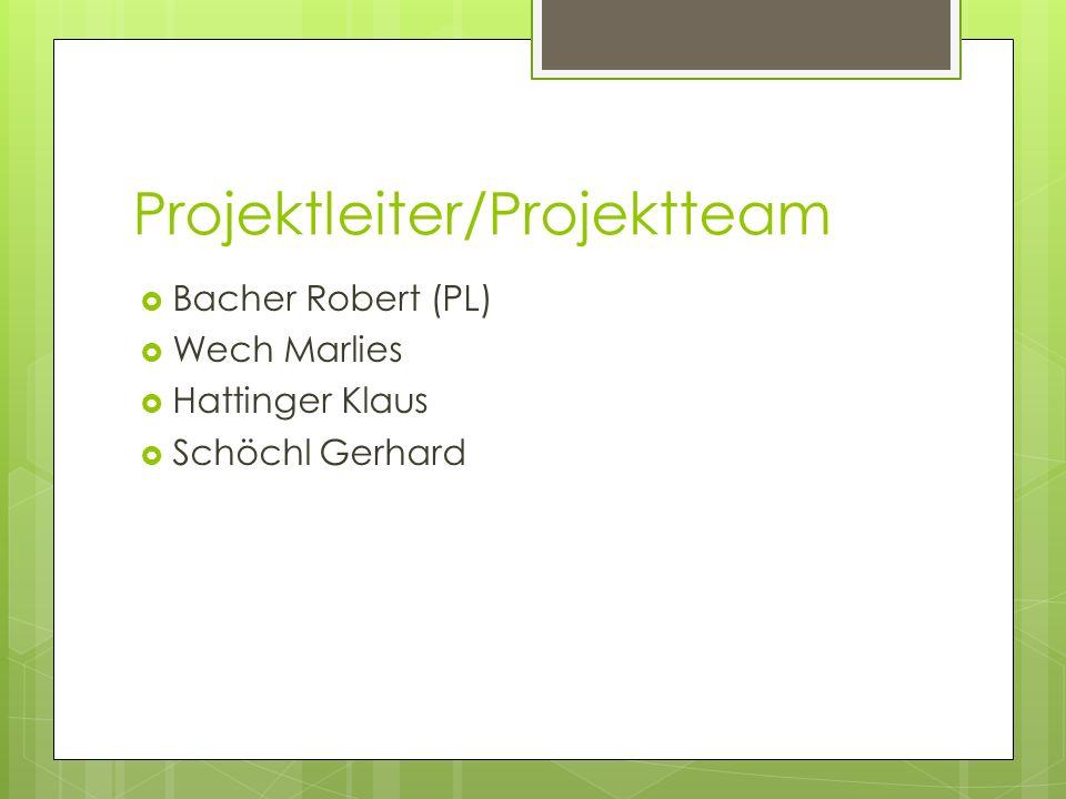 Projektleiter/Projektteam Bacher Robert (PL) Wech Marlies Hattinger Klaus Schöchl Gerhard