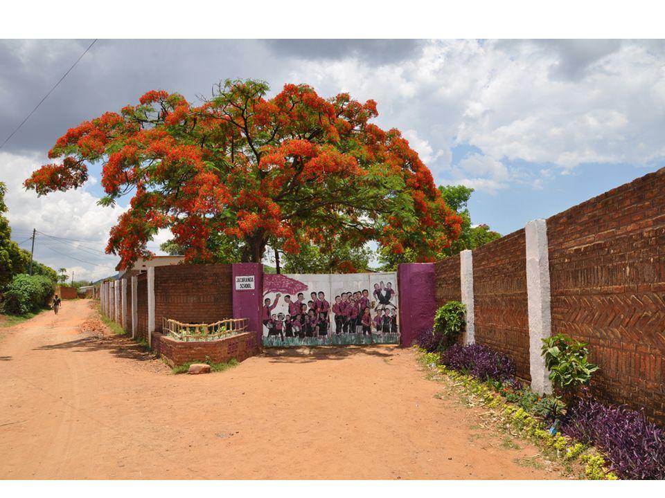 The Jacaranda School Kostenlose Bildung und Fürsorge für 400 Waisen in Malawi