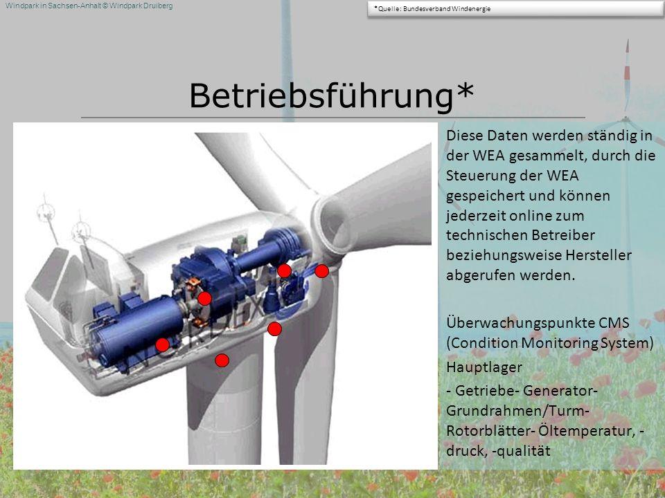 Windpark in Sachsen-Anhalt © Windpark Druiberg Betriebsführung* Diese Daten werden ständig in der WEA gesammelt, durch die Steuerung der WEA gespeiche