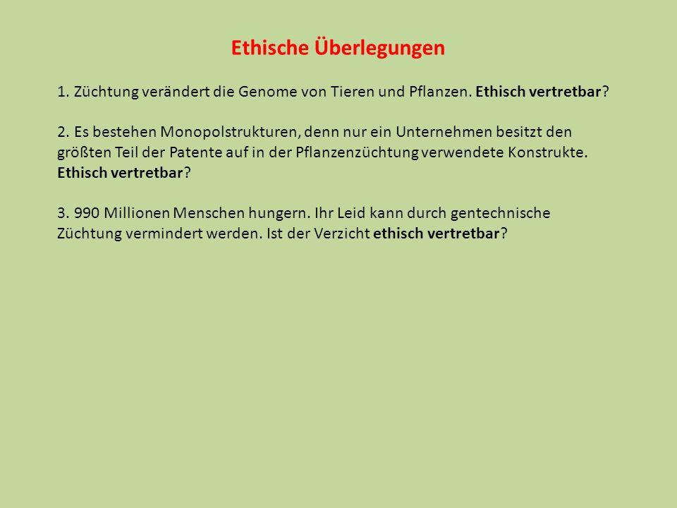 Ethische Überlegungen 1. Züchtung verändert die Genome von Tieren und Pflanzen. Ethisch vertretbar? 2. Es bestehen Monopolstrukturen, denn nur ein Unt