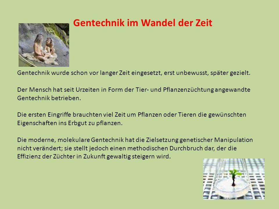 Gentechnik – genetic engineering Die Ingenieurskunst des 20./21.