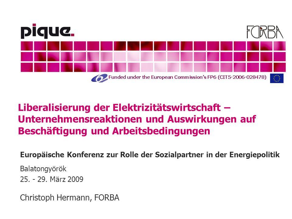 Liberalisierung der Elektrizitätswirtschaft – Unternehmensreaktionen und Auswirkungen auf Beschäftigung und Arbeitsbedingungen Europäische Konferenz zur Rolle der Sozialpartner in der Energiepolitik Balatongyörök 25.