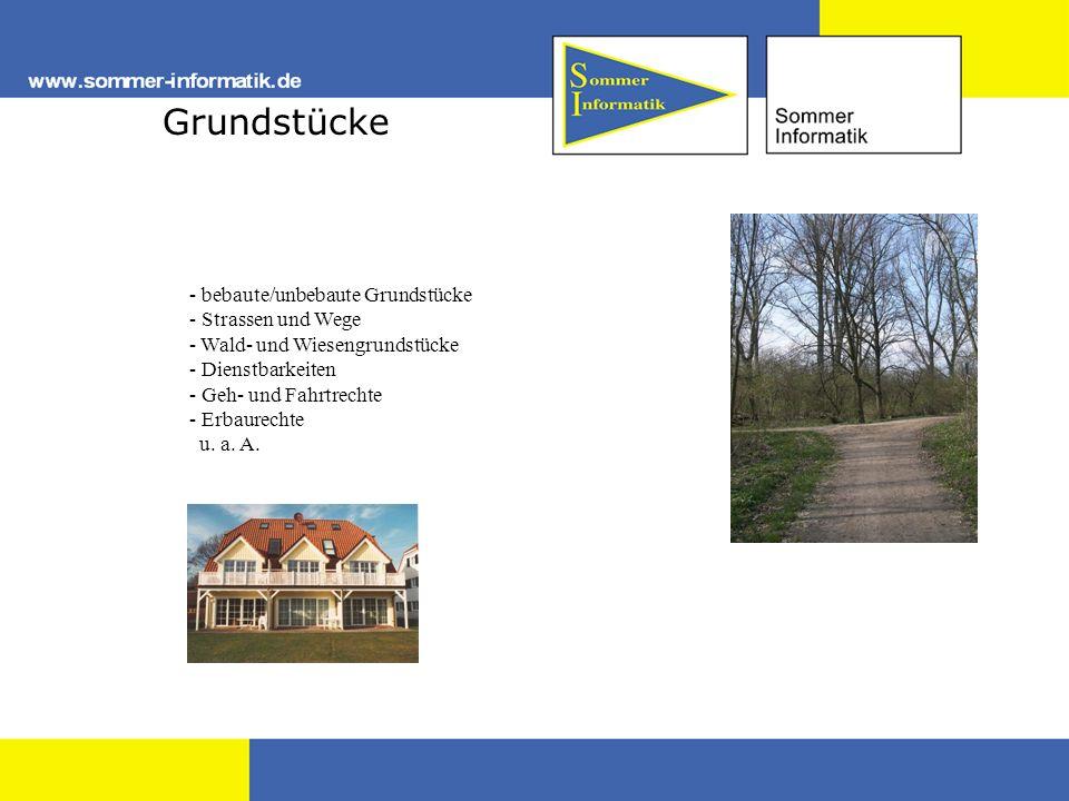 Grundstücke - bebaute/unbebaute Grundstücke - Strassen und Wege - - Wald- und Wiesengrundstücke - - Dienstbarkeiten - - Geh- und Fahrtrechte - - Erbau