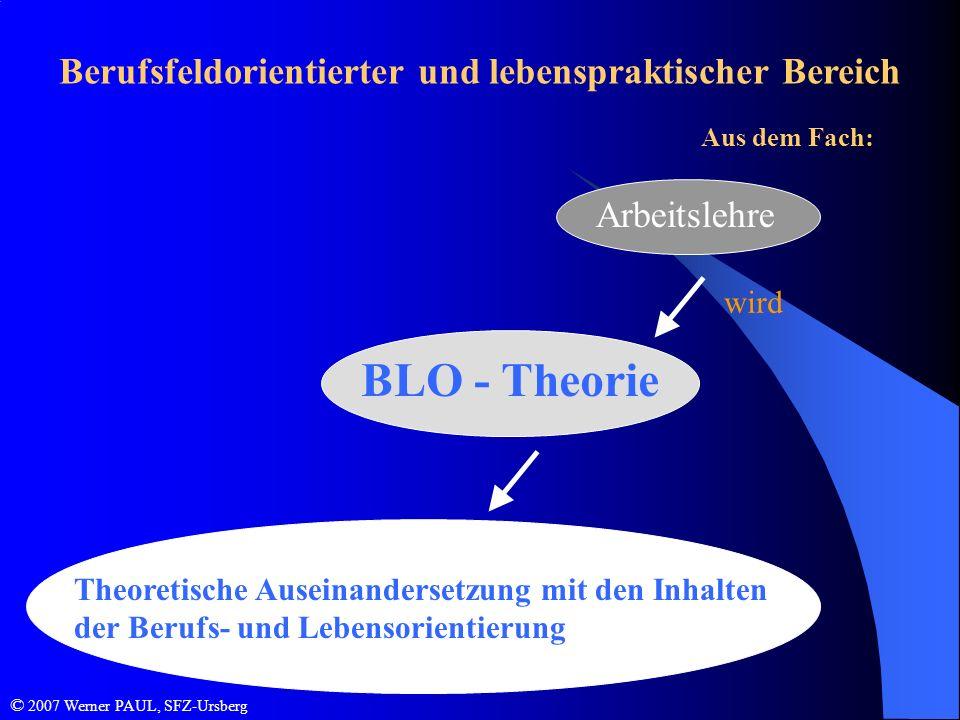 Berufsfeldorientierter und lebenspraktischer Bereich Aus dem Fach: Arbeitslehre Theoretische Auseinandersetzung mit den Inhalten der Berufs- und Leben