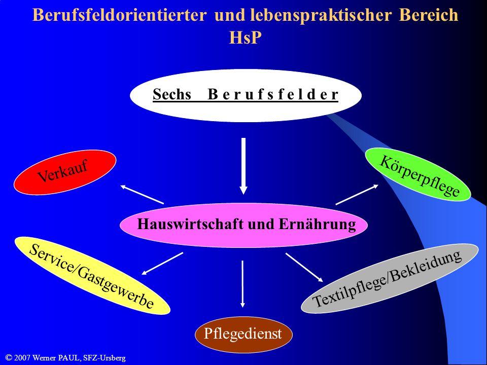Berufsfeldorientierter und lebenspraktischer Bereich HsP Sechs B e r u f s f e l d e r Textilpflege/Bekleidung Service/Gastgewerbe Verkauf Pflegediens