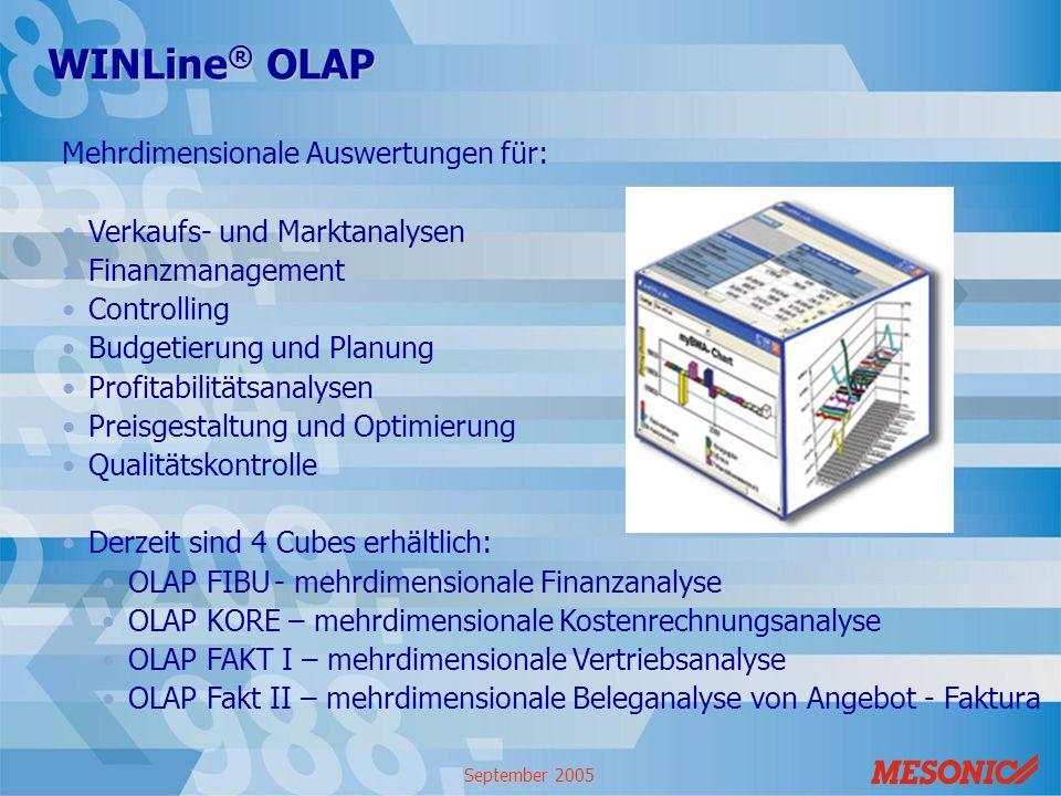 September 2005 WINLine ® OLAP Mehrdimensionale Auswertungen für: Verkaufs- und Marktanalysen Finanzmanagement Controlling Budgetierung und Planung Pro