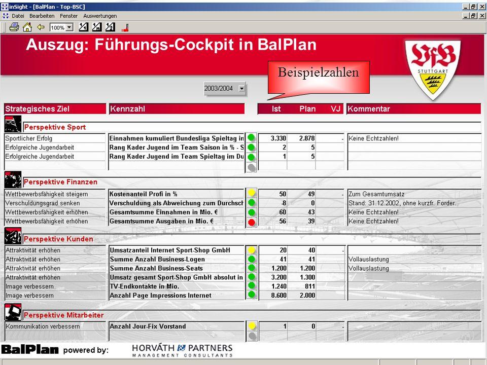 Beispielzahlen Auszug: Führungs-Cockpit in BalPlan