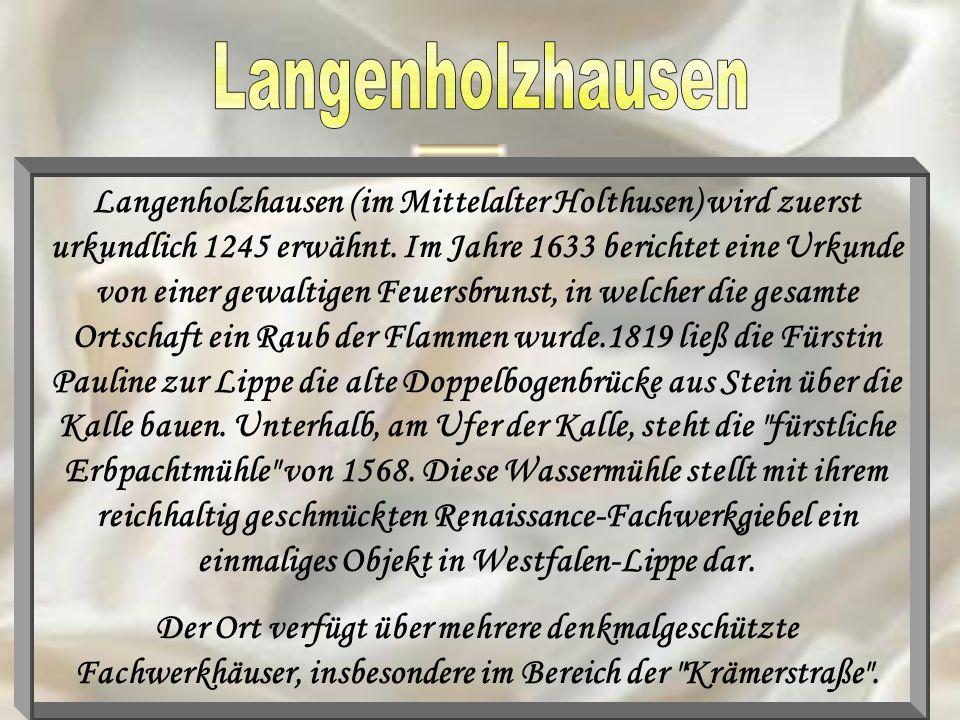Langenholzhausen (im Mittelalter Holthusen) wird zuerst urkundlich 1245 erwähnt. Im Jahre 1633 berichtet eine Urkunde von einer gewaltigen Feuersbruns