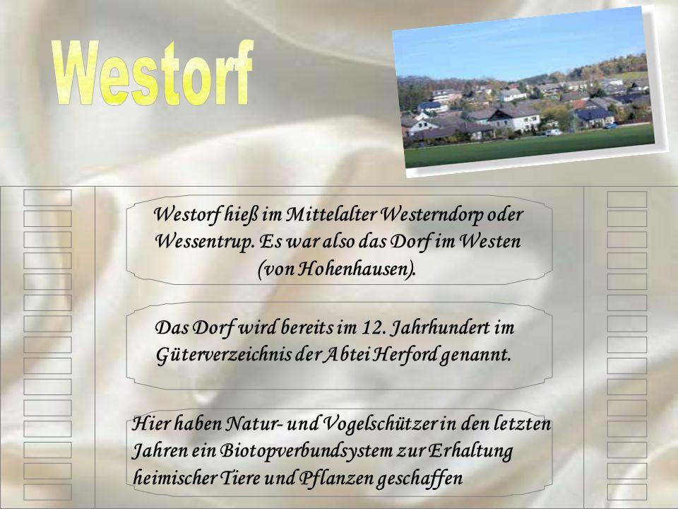 Westorf hieß im Mittelalter Westerndorp oder Wessentrup. Es war also das Dorf im Westen (von Hohenhausen). Das Dorf wird bereits im 12. Jahrhundert im