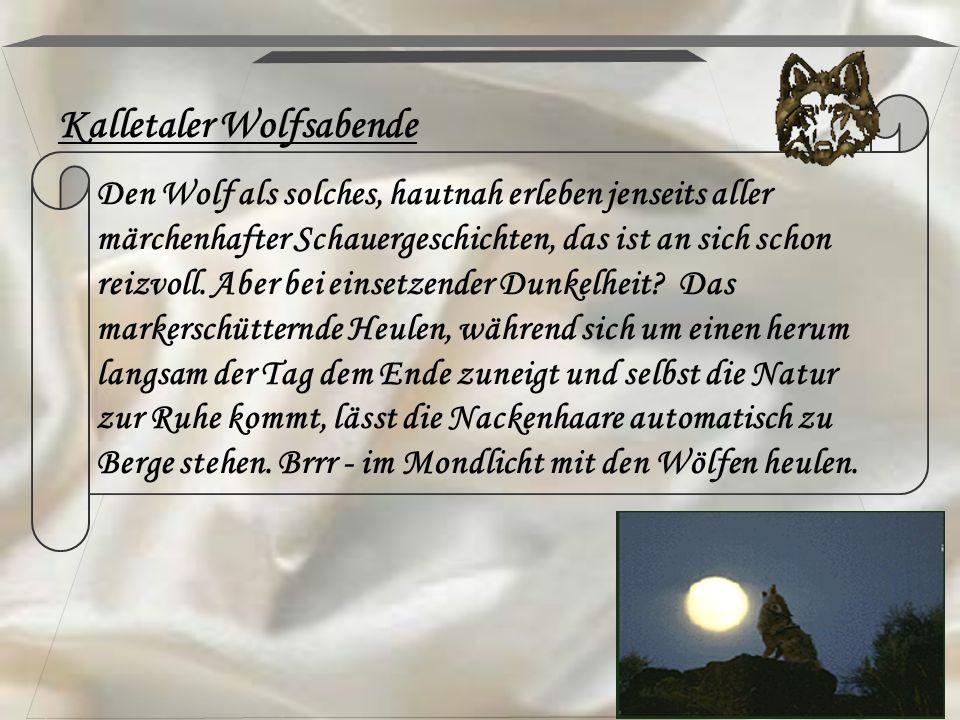 Kalletaler Wolfsabende Den Wolf als solches, hautnah erleben jenseits aller märchenhafter Schauergeschichten, das ist an sich schon reizvoll. Aber bei