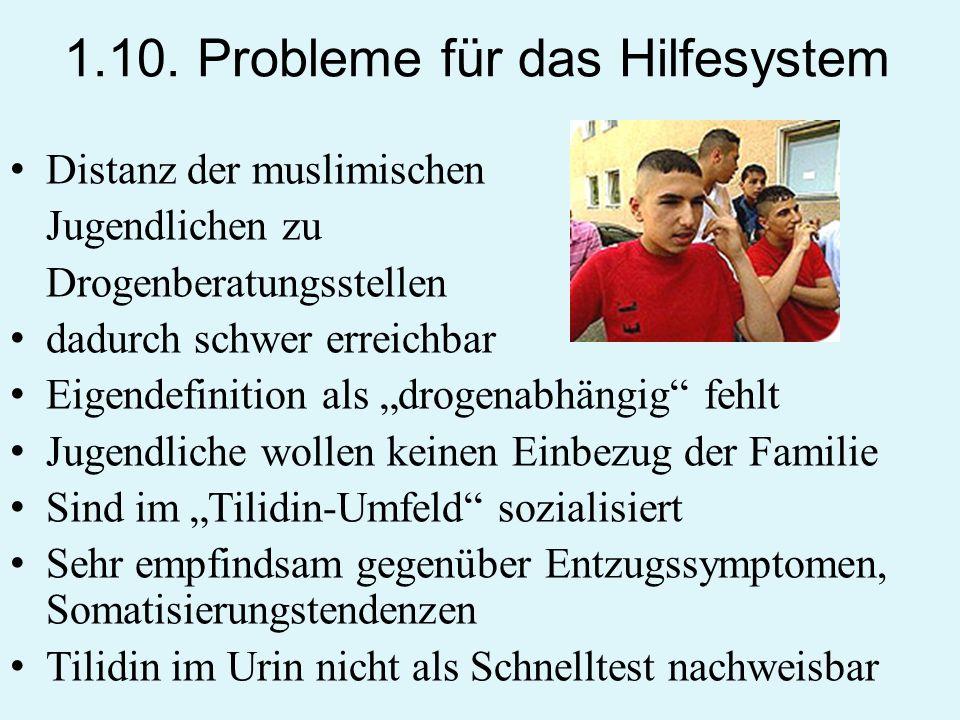 1.10. Probleme für das Hilfesystem Distanz der muslimischen Jugendlichen zu Drogenberatungsstellen dadurch schwer erreichbar Eigendefinition als droge