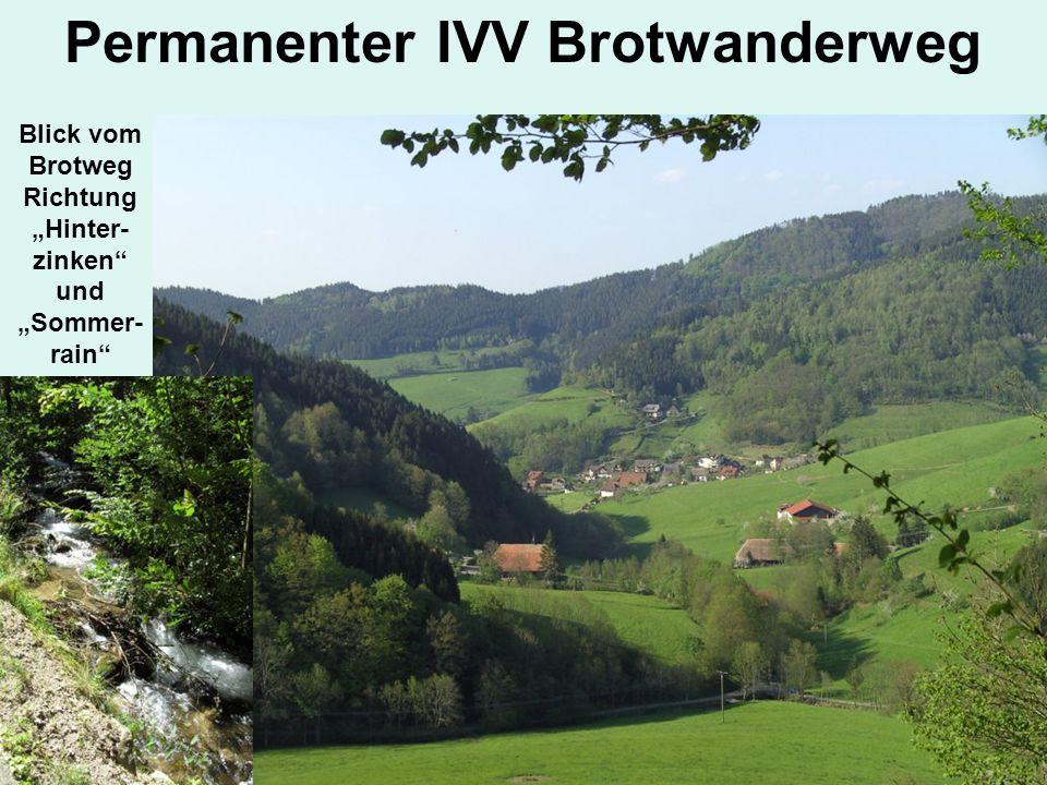 Permanenter IVV Brotwanderweg Blick vom Brotweg Richtung Hinter- zinken und Sommer- rain
