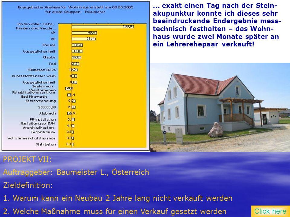 PROJEKT VII: Auftraggeber: Baumeister L., Österreich Zieldefinition: 1.