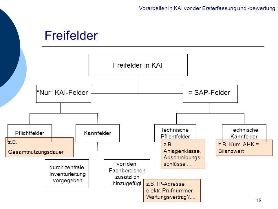 18 Freifelder Technische Pflichtfelder Technische Kannfelder Freifelder in KAI = SAP-FelderNur KAI-Felder PflichtfelderKannfelder durch zentrale Inven