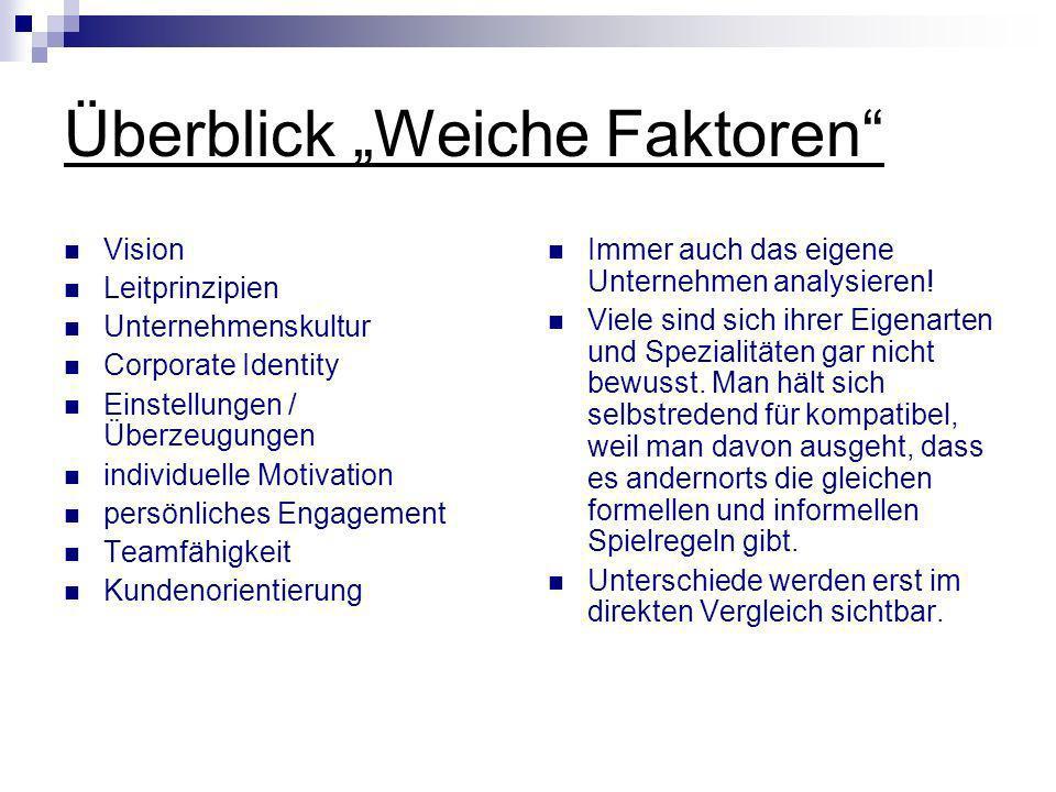 Überblick Weiche Faktoren Vision Leitprinzipien Unternehmenskultur Corporate Identity Einstellungen / Überzeugungen individuelle Motivation persönlich