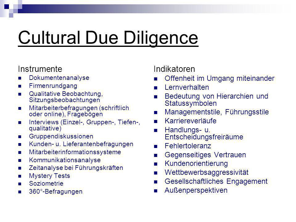 Cultural Due Diligence Instrumente Dokumentenanalyse Firmenrundgang Qualitative Beobachtung, Sitzungsbeobachtungen Mitarbeiterbefragungen (schriftlich