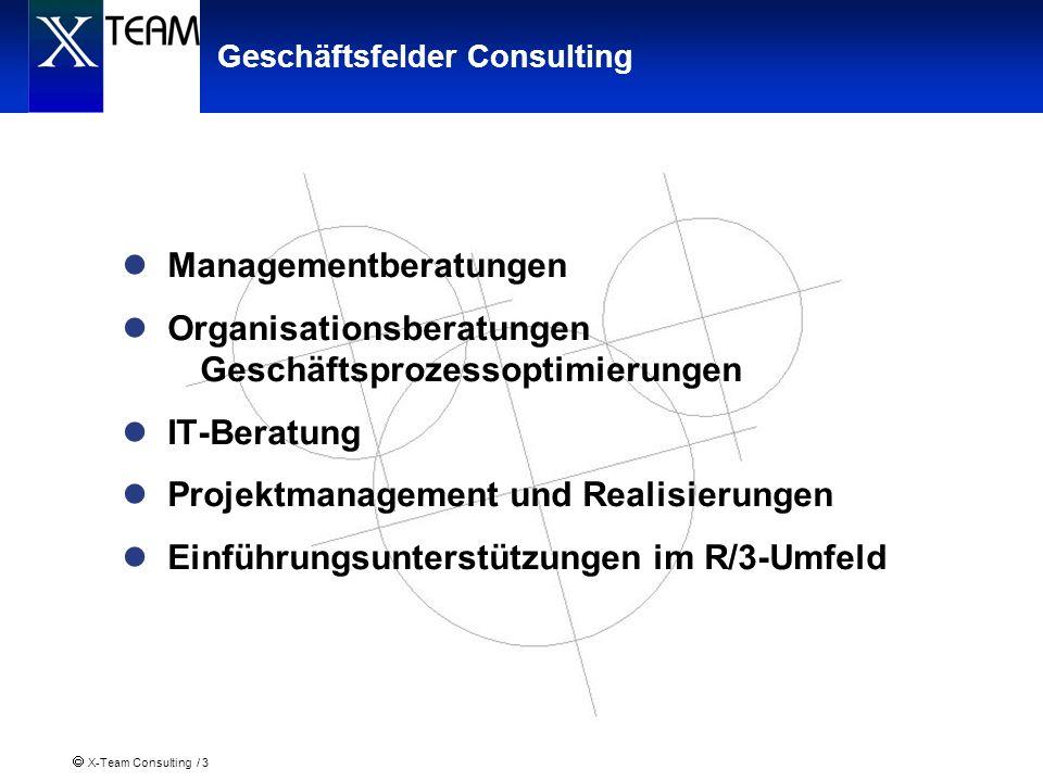 X-Team Consulting / 3 Geschäftsfelder Consulting Managementberatungen Organisationsberatungen Geschäftsprozessoptimierungen IT-Beratung Projektmanagem