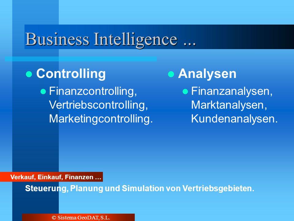 © Sistema GeoDAT, S.L. Business Intelligence... Verkauf, Einkauf, Finanzen … Steuerung, Planung und Simulation von Vertriebsgebieten. Controlling Fina