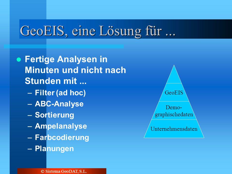 © Sistema GeoDAT, S.L. GeoEIS, eine Lösung für... Fertige Analysen in Minuten und nicht nach Stunden mit... –Filter (ad hoc) –ABC-Analyse –Sortierung