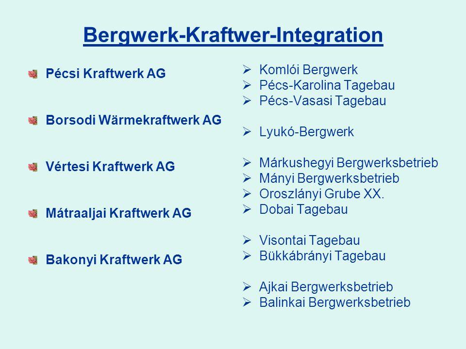 Bergwerk-Kraftwer-Integration Pécsi Kraftwerk AG Borsodi Wärmekraftwerk AG Vértesi Kraftwerk AG Mátraaljai Kraftwerk AG Bakonyi Kraftwerk AG Komlói Be