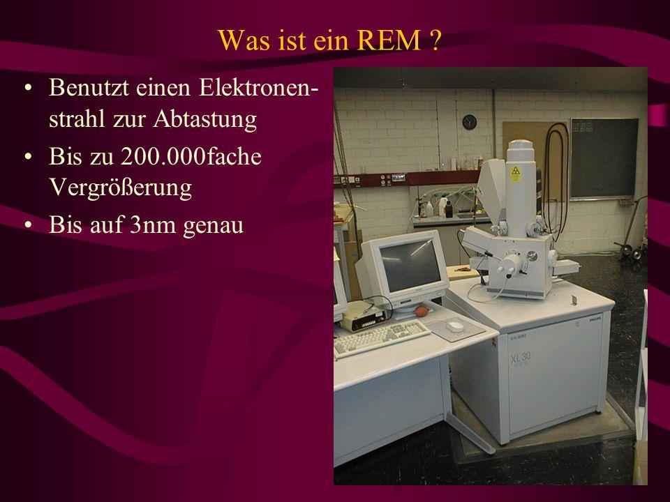 Was ist ein REM ? Benutzt einen Elektronen- strahl zur Abtastung Bis zu 200.000fache Vergrößerung Bis auf 3nm genau