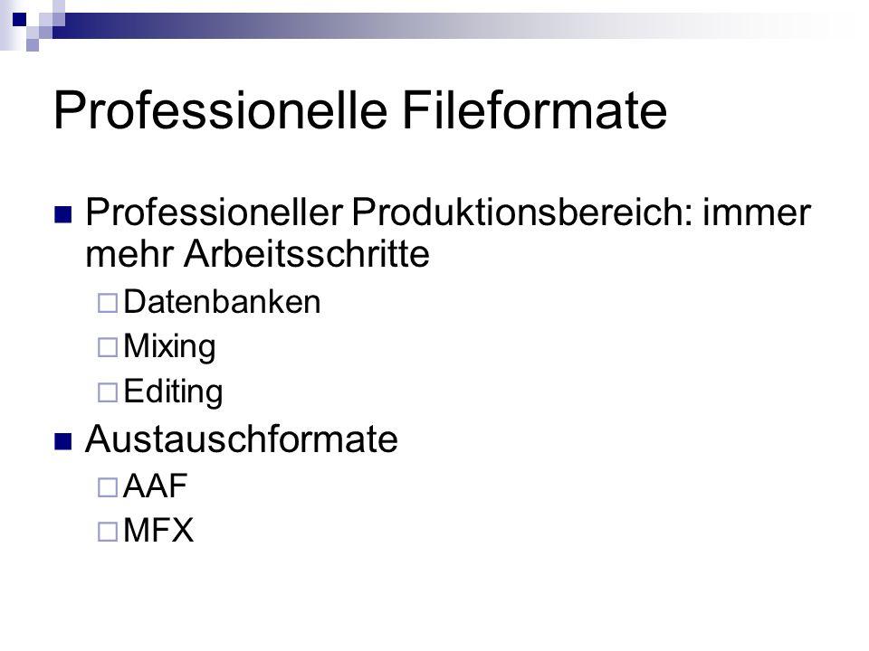 Professionelle Fileformate Professioneller Produktionsbereich: immer mehr Arbeitsschritte Datenbanken Mixing Editing Austauschformate AAF MFX