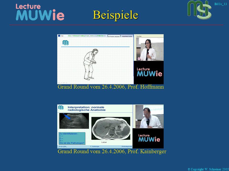 Bi03c_13 © Copyright W. Schreiner 2005 Beispiele Grand Round vom 26.4.2006, Prof.