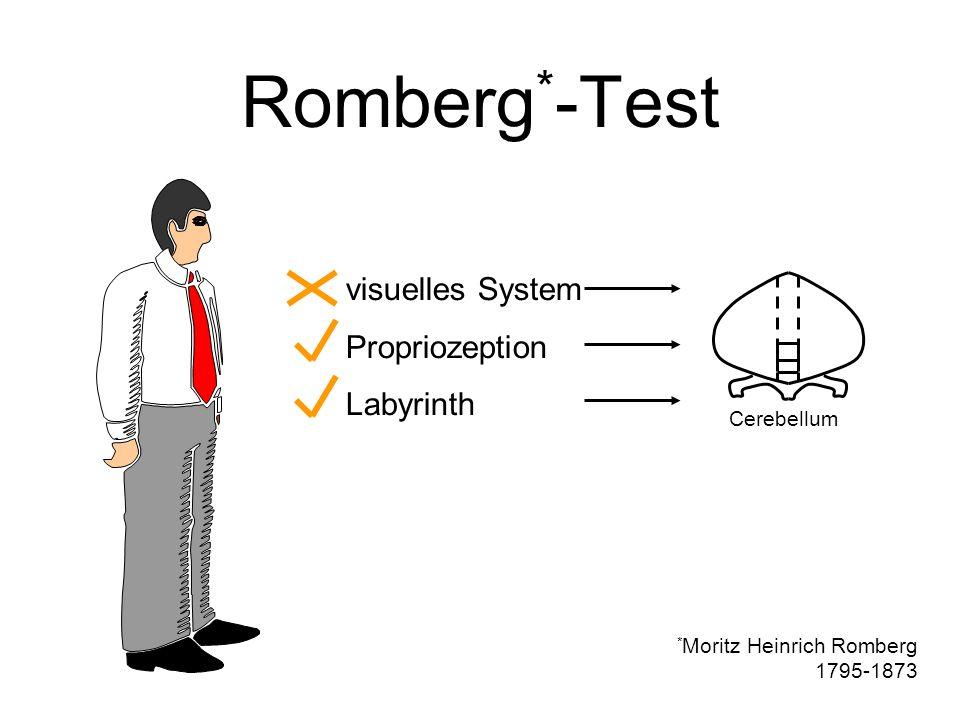 Romberg * -Test visuelles System Propriozeption Labyrinth Cerebellum * Moritz Heinrich Romberg 1795-1873