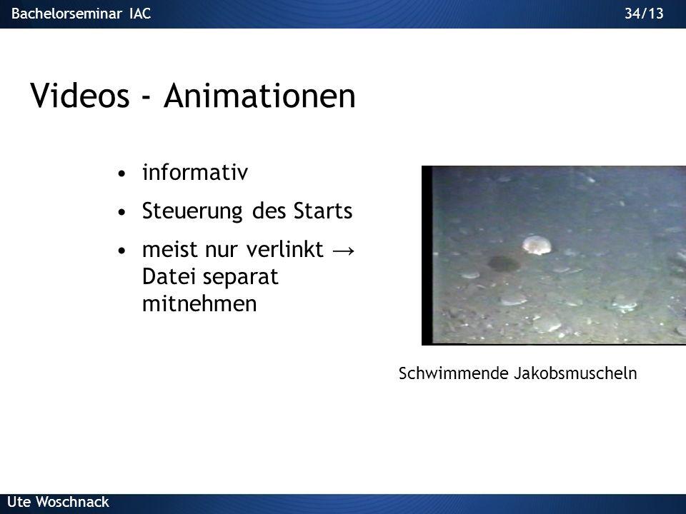 33/29Bachelorseminar IAC Ute Woschnack 33/13 Powerpoint 1.Einsatz von Text 2.Gestaltung von Folien 3.Grafiken 4.Animationen/Audio/Video