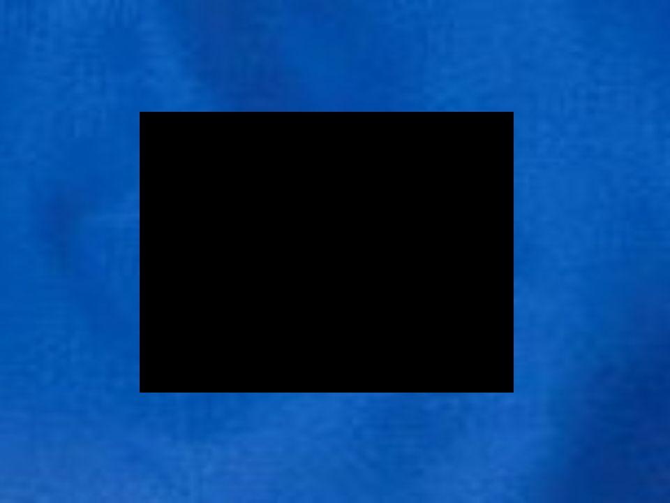 Kopenhagener Kriterien: PHAREBeitrittspartnerschaften Special Accession Programme for Agriculture and Rural Development Modernisierung von Landwirtschaft und Nahrungsmittelindustrie Instrument for Structural Policies for Pre-accession Infrastrukturmaßnahmen im Verkehrs- und Umweltbereich SAPARD/ ISPA