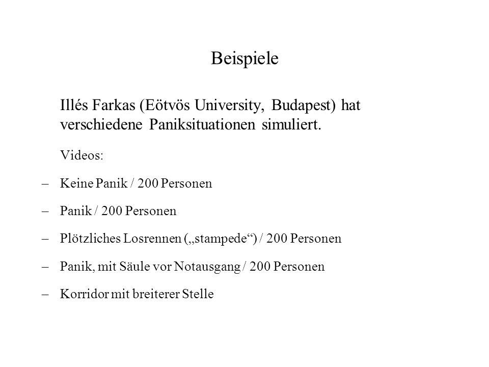 Beispiele Illés Farkas (Eötvös University, Budapest) hat verschiedene Paniksituationen simuliert. Videos: –Keine Panik / 200 Personen –Panik / 200 Per