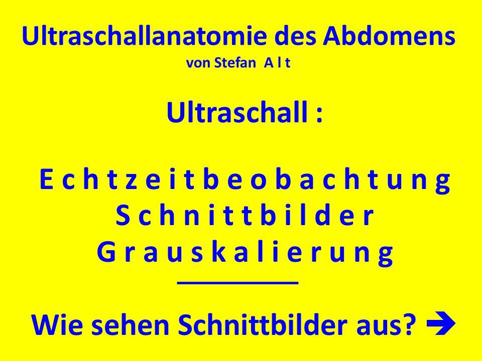 Ultraschallanatomie des Abdomens von Stefan A l t Ultraschall : E c h t z e i t b e o b a c h t u n g S c h n i t t b i l d e r G r a u s k a l i e r
