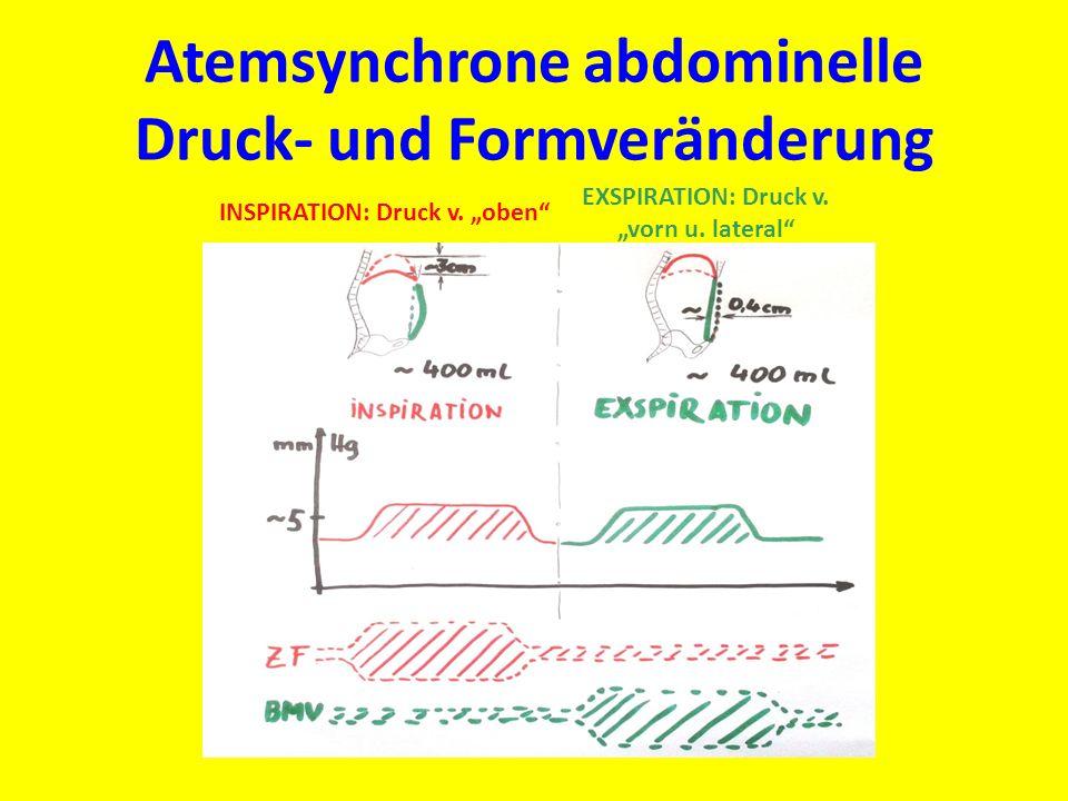 Atemsynchrone abdominelle Druck- und Formveränderung INSPIRATION: Druck v. oben EXSPIRATION: Druck v. vorn u. lateral