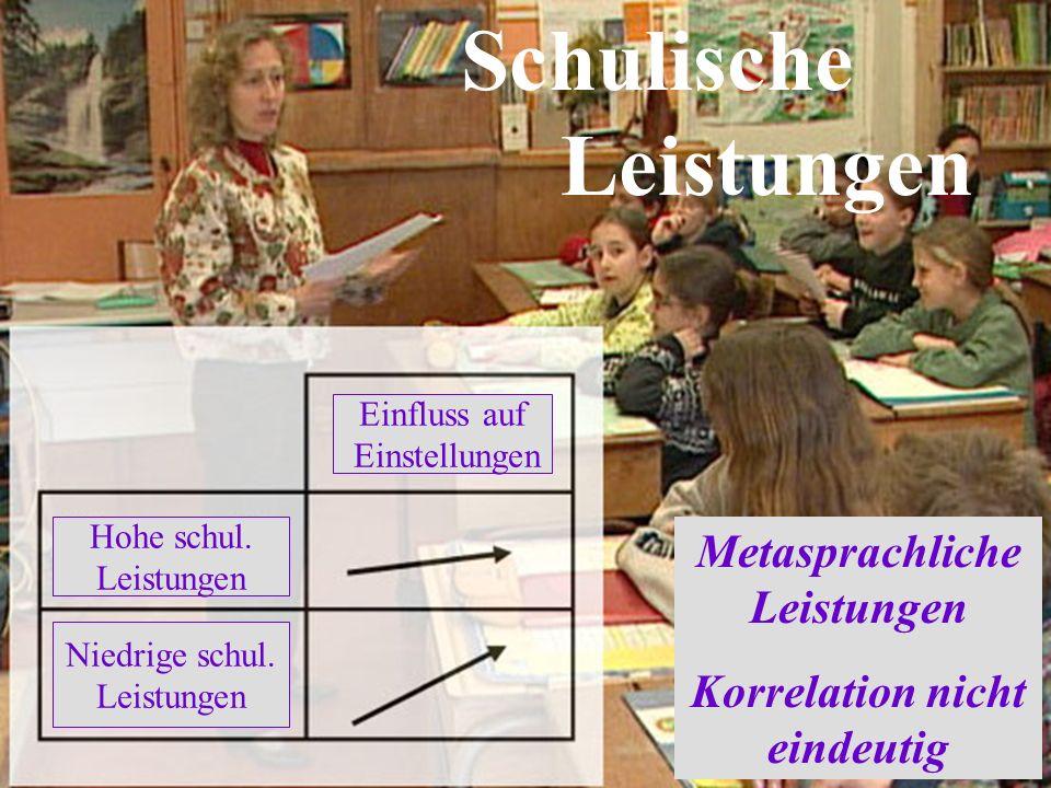 Schulische Leistungen Einfluss auf Einstellungen Hohe schul.