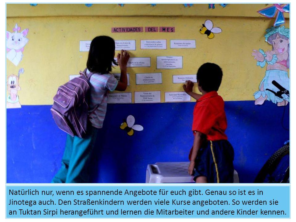 Kursangebot 2: Bildung