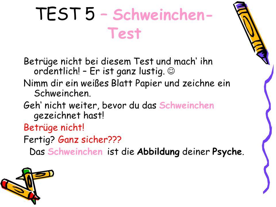 TEST 5 – Schweinchen- Test Betrüge nicht bei diesem Test und mach ihn ordentlich! – Er ist ganz lustig. Nimm dir ein weißes Blatt Papier und zeichne e