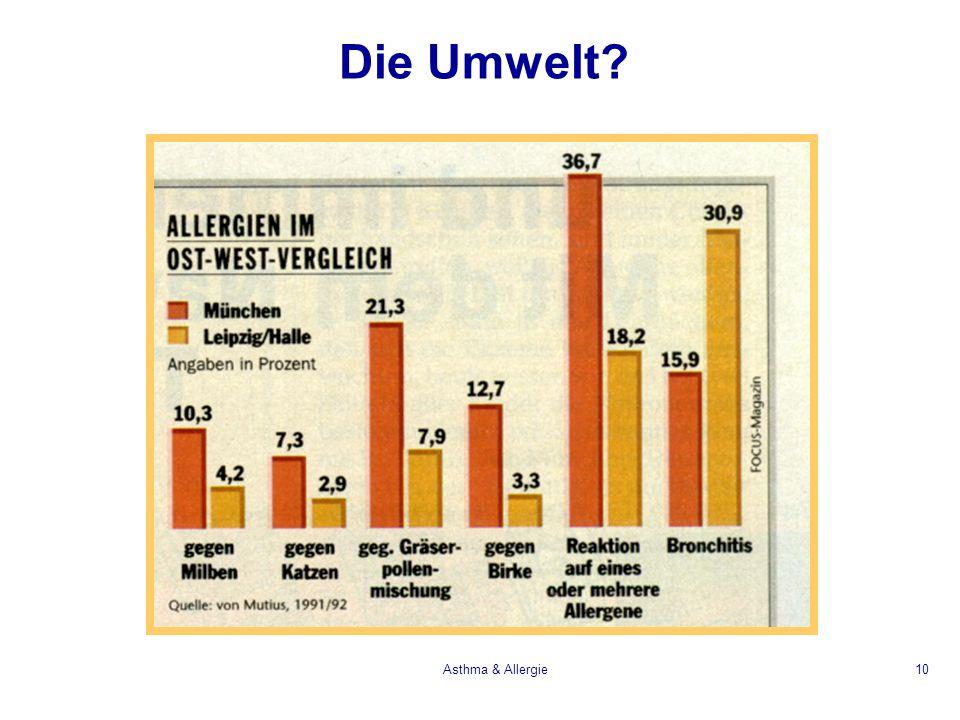 Asthma & Allergie10 Die Umwelt?