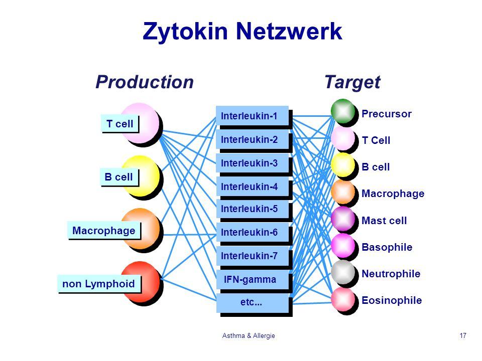 Asthma & Allergie17 Precursor T Cell B cell Macrophage Mast cell Basophile Neutrophile Eosinophile ProductionTarget Interleukin-1 Interleukin-2 Interl