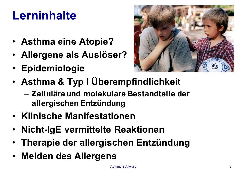 Lerninhalte Asthma eine Atopie? Allergene als Auslöser? Epidemiologie Asthma & Typ I Überempfindlichkeit –Zelluläre und molekulare Bestandteile der al