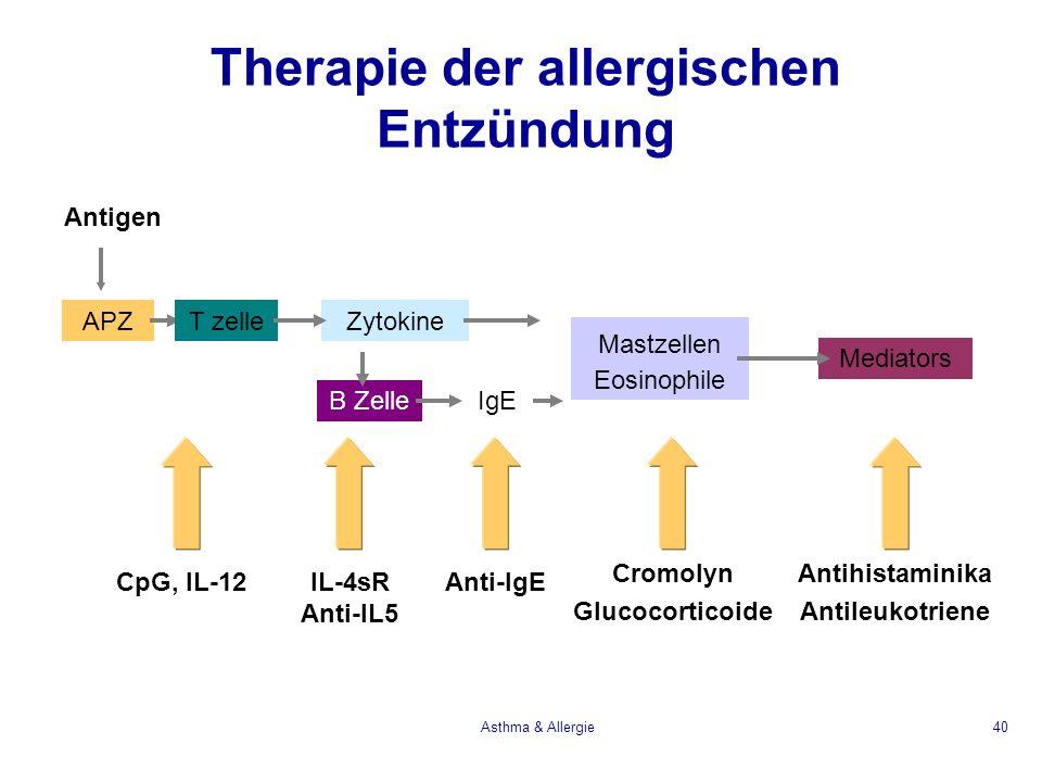 Asthma & Allergie40 Therapie der allergischen Entzündung Antigen APZT zelleZytokine B ZelleIgE Mastzellen Eosinophile Mediators IL-4sR Anti-IL5 CpG, I